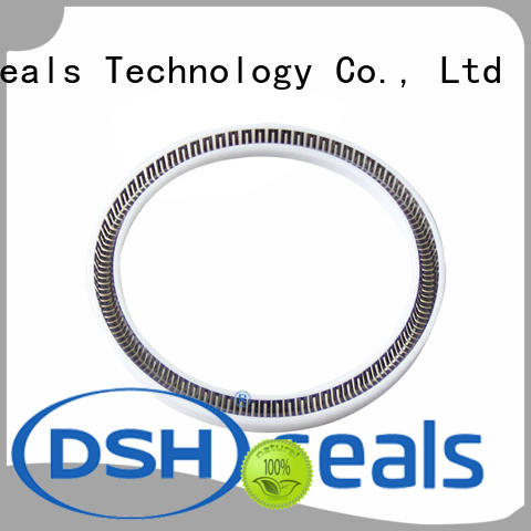 DSH durable spring seal supplier for metallurgical equipment