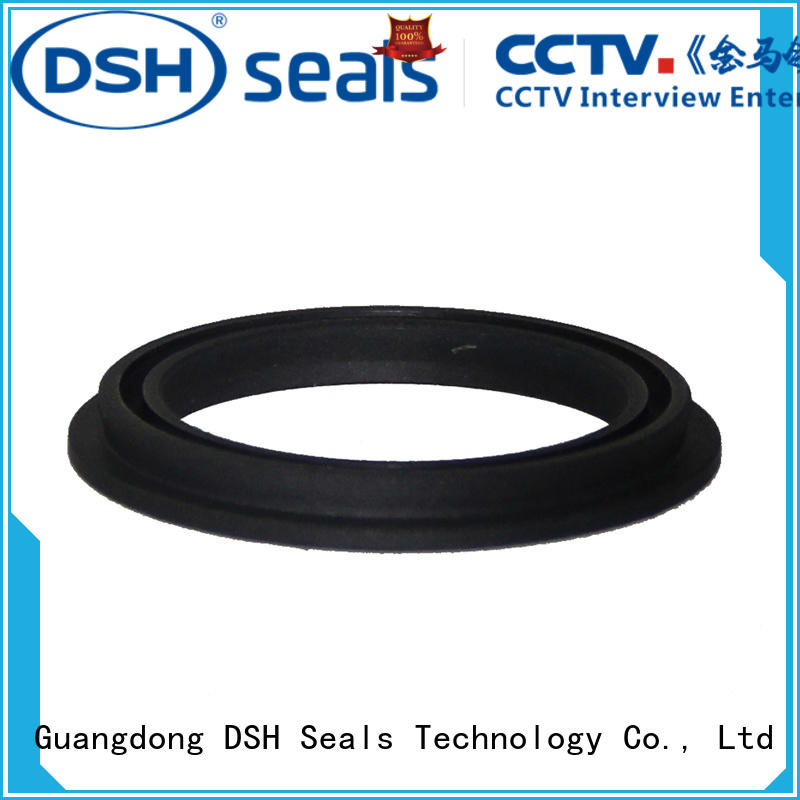spring loaded double lip seal