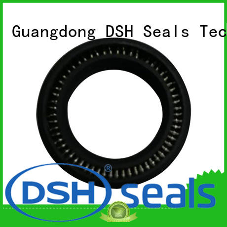 seal energized seal manufacturer for engineering