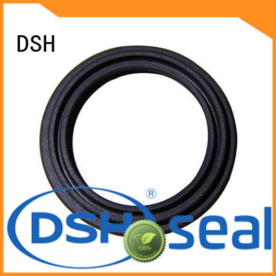 ptcinternal spring energized seals wholesale for guide ring