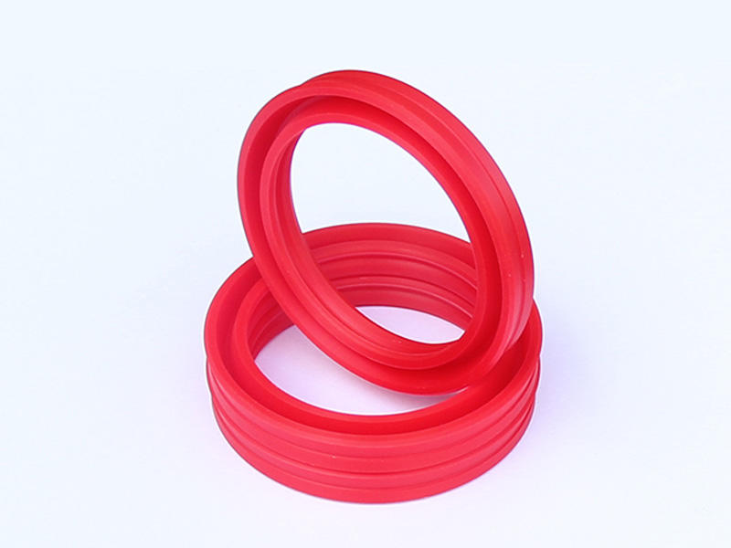 DSH-Professional Cylinder Rod Seals Rod Seal Catalogue Manufacture-1