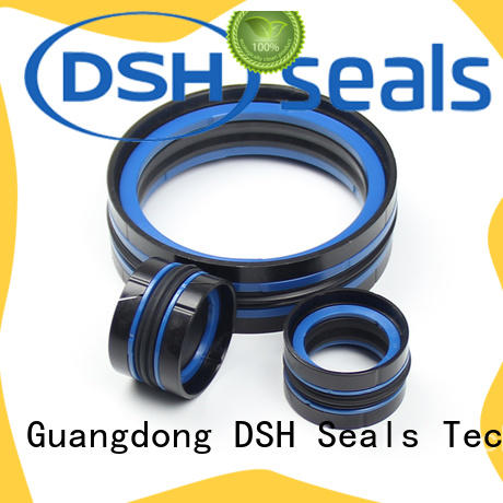 DSH filled piston seal design factory for excavator
