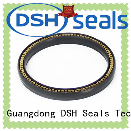 DSH carbon spring energized teflon seals supplier for gas industry