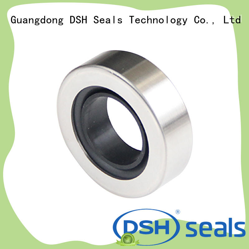 DSH typestainless oil seal ring directly sale for gas industry