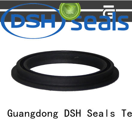 DSH ptbcustom energized seal personalized for pneumatic industry