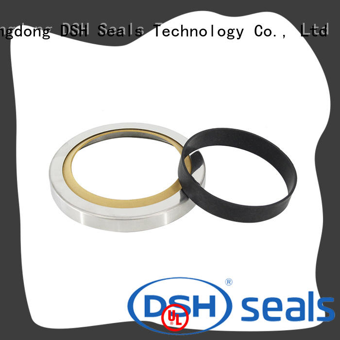 DSH la different types of oil seals customized for engineering