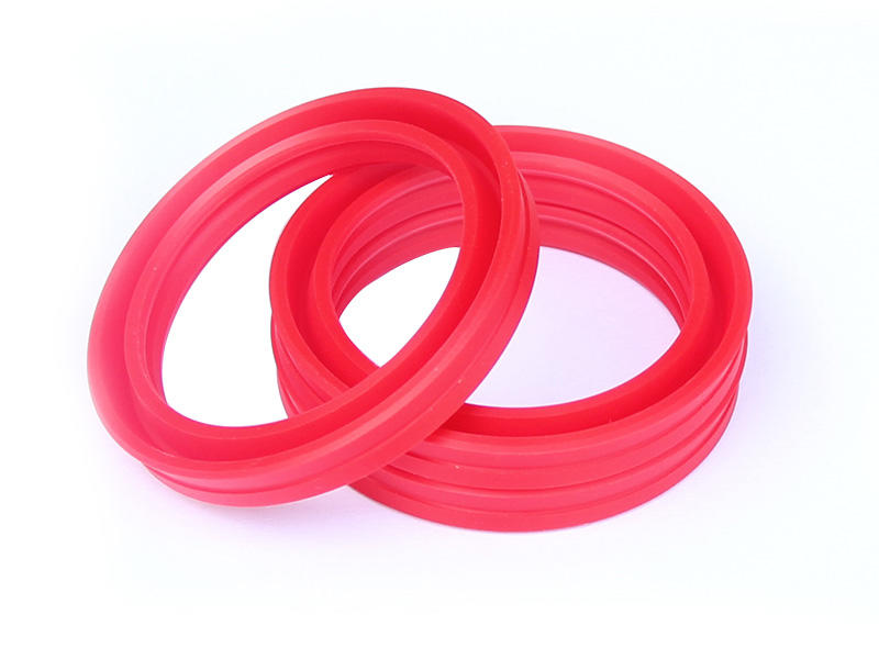 DSH-Professional Cylinder Rod Seals Rod Seal Catalogue Manufacture