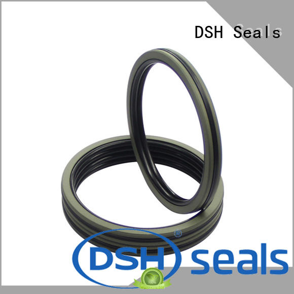 duty piston seal with good price for machine DSH