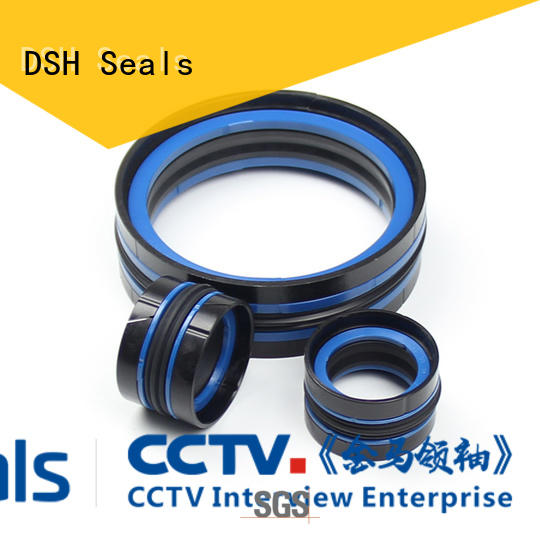 DSH piston seal material glyd