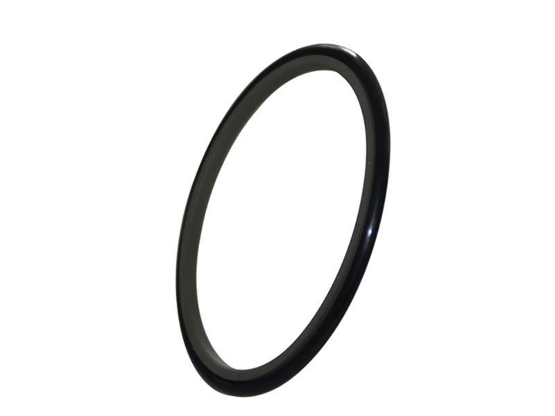 DSH-Rod Wiper Dsi-bronze Filled Ptfe Hydraulic Rod Seal Glyd Ring