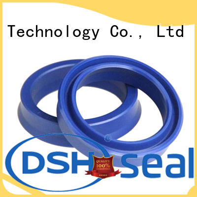 Hot piston piston seal rubber spg DSH Brand