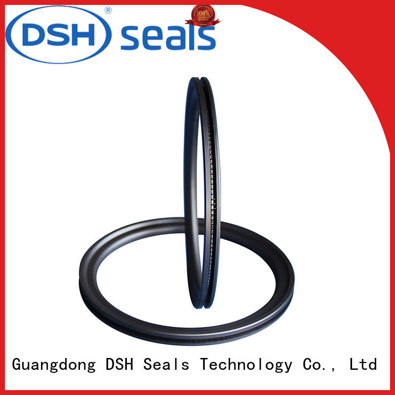 DSH energized spring energized ptfe seal factory price for gas industry