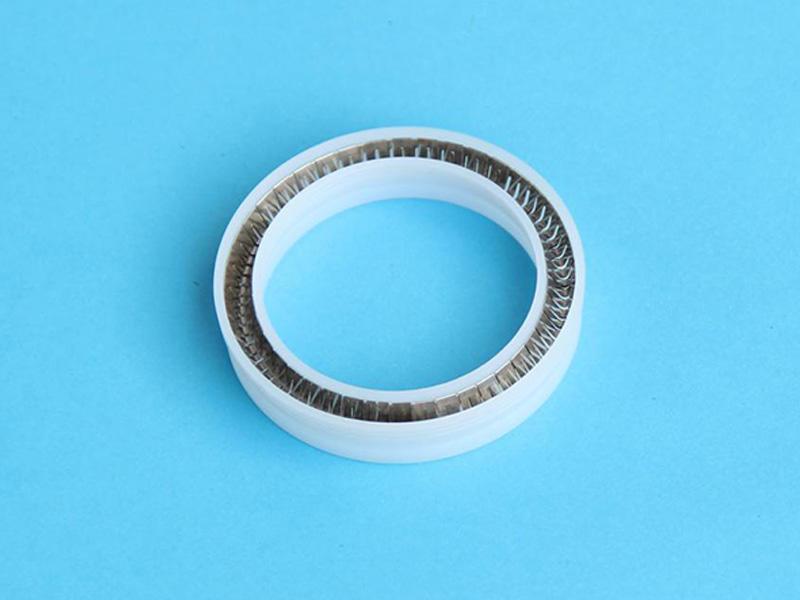 DSH-Manufacturer Of Spring Energized Ptfe Seal Custom Seal-2