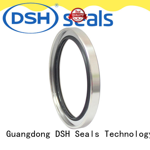 seal oil seal specification aral DSH