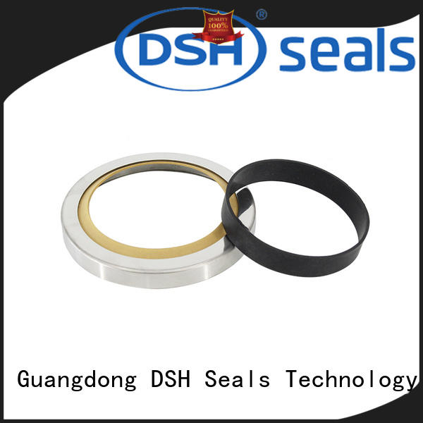 seals double lip oil seal typerotary DSH