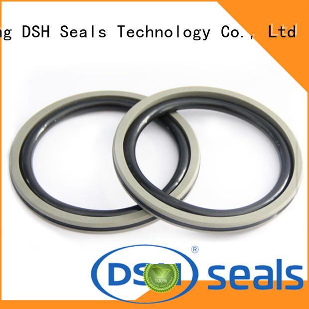 DSH filled ptfe piston seal inquire now for metallurgical equipment