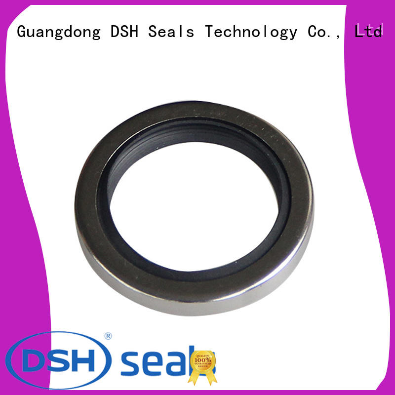 DSH double different types of oil seals from China for metallurgical equipment