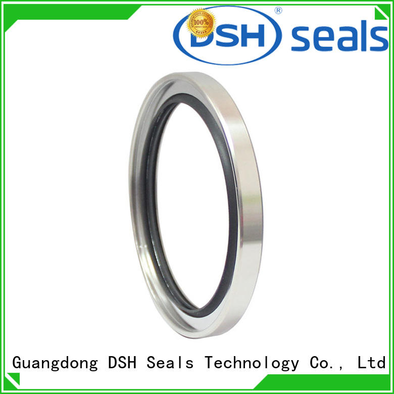 DSH typestainless oil seal specification from China for machine