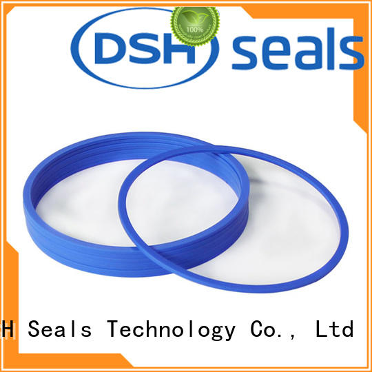 DSH encapsulated ptfe piston seal design for excavator