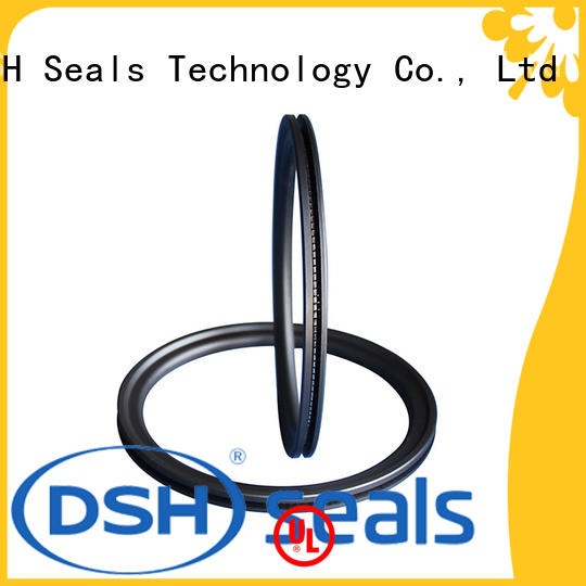 helical spring loaded double lip seal supplier for electric equipment DSH