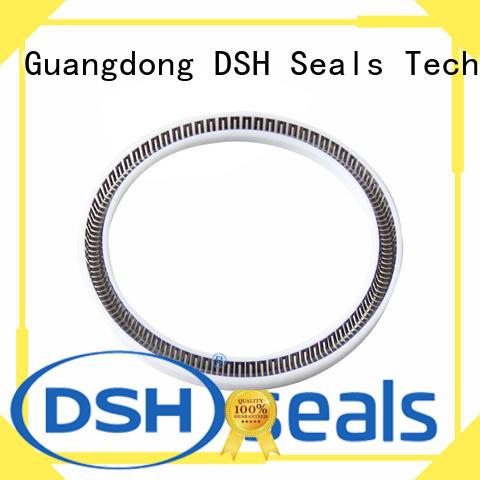 PTB-Custom Spring Energized PTFE Seal