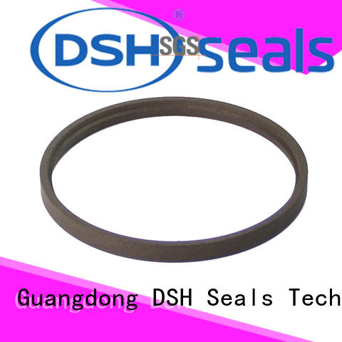 rod wiper seal sizes dsibronze for chemical equipment DSH