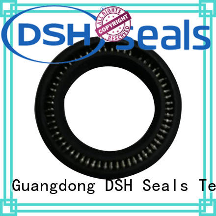DSH carbon fiber spring energized teflon seals personalized for hydraulic industry