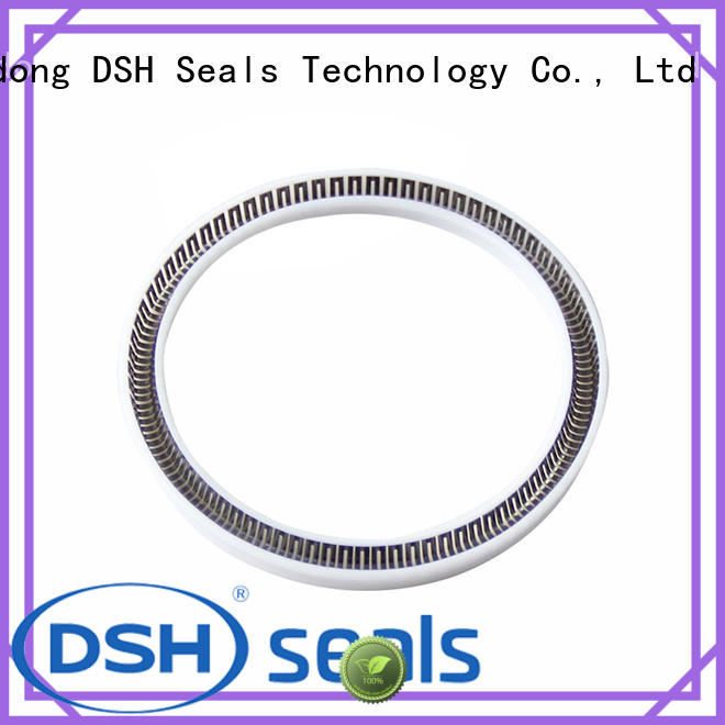 DSH helical spring energised seals factory price for oil industry