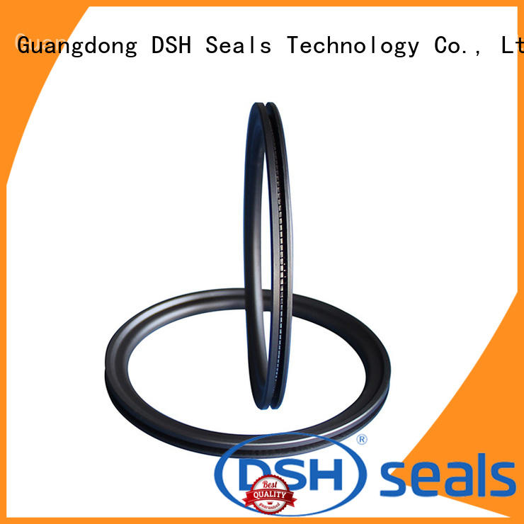 DSH ptfe spring seal factory price for guide ring