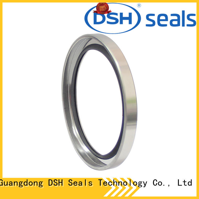 DSH radial oil seals series for pneumatic industry