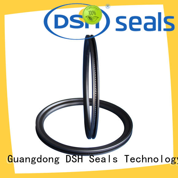 DSH durable spring seal factory price for automotive industry