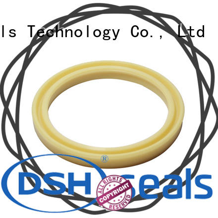 DSH u-cup hydraulic cylinder rod seals personalized for gas industry