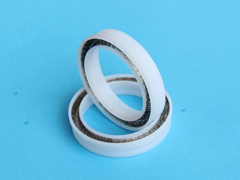 DSH-Manufacturer Of Spring Energized Ptfe Seal Custom Seal