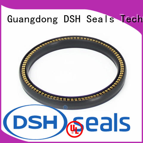 DSH face spring loaded double lip seal wholesale for chemical equipment