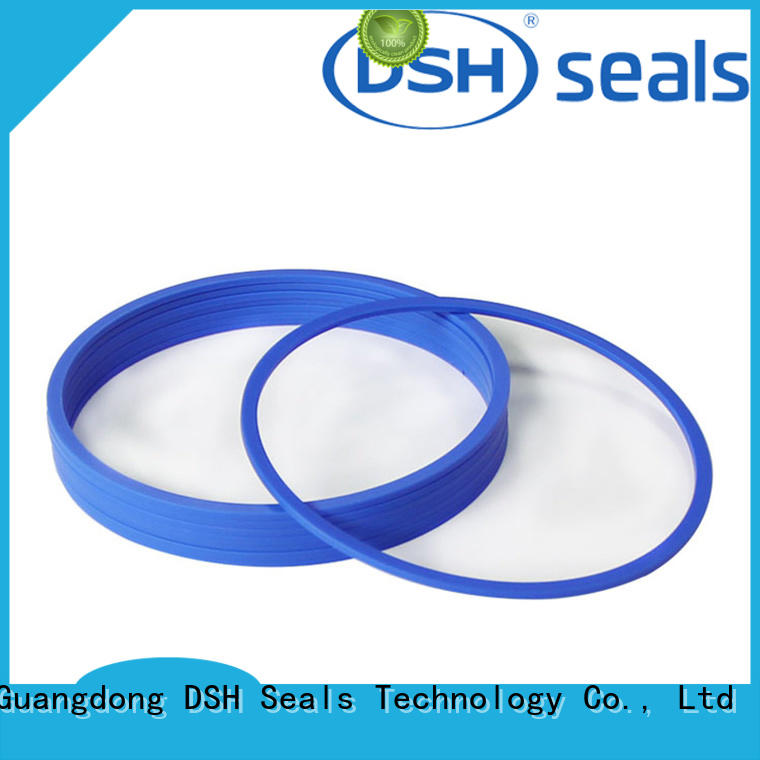 DSH drtcustom ptfe piston seal design for gas industry