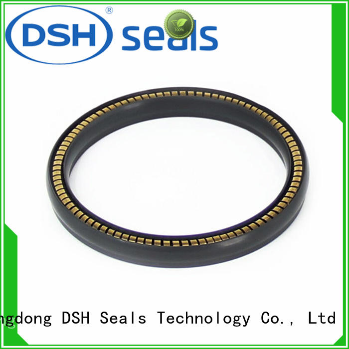 DSH ptwcustom variseal factory price for electric equipment