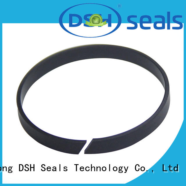 DSH filled guide ring customized for pneumatic industry