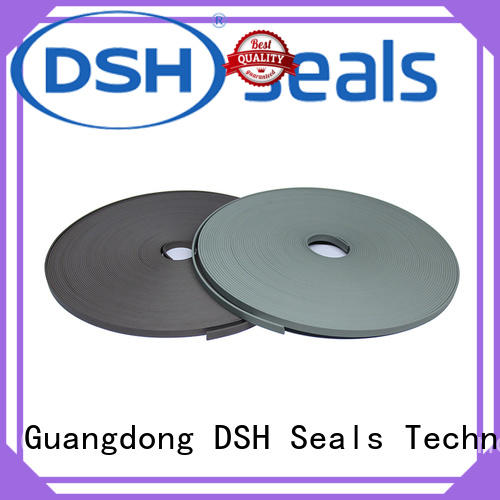 DSH wearguide ptfe wear strips customized for pneumatic industry