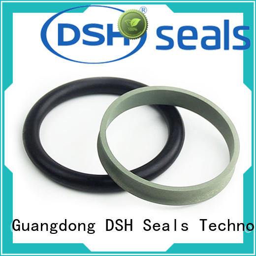 DSH low step seal wholesale for chemical equipment