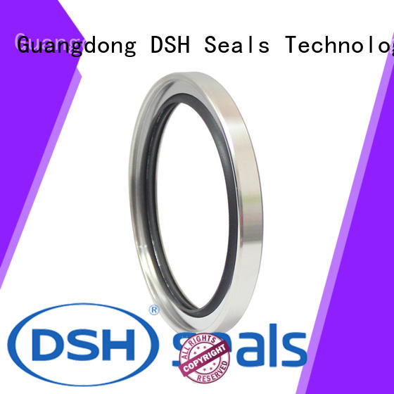 DSH filled oil seal types from China for guide ring