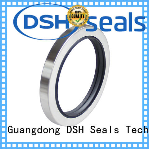 DSH double engine oil seal typesingle for electric equipment
