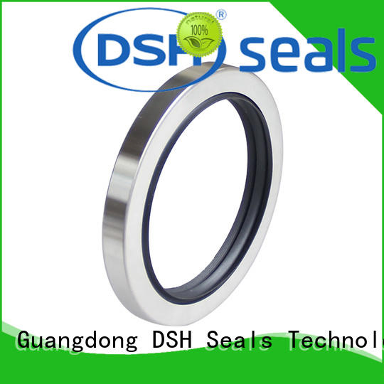 thread engine oil seal from China for engineering DSH