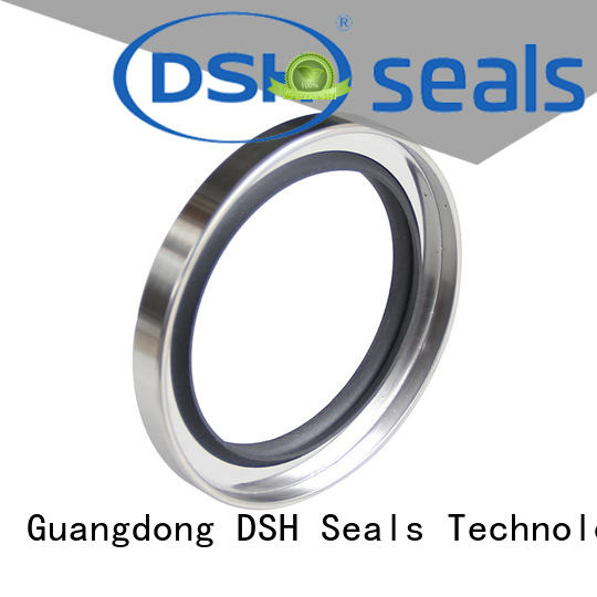 seal oil seal catalog customized for pneumatic industry DSH