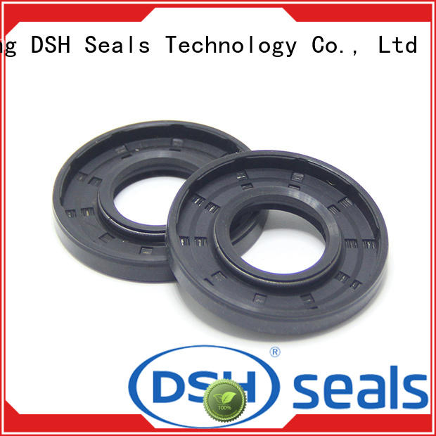 DSH filled viton oil seal from China for coal mining machinery