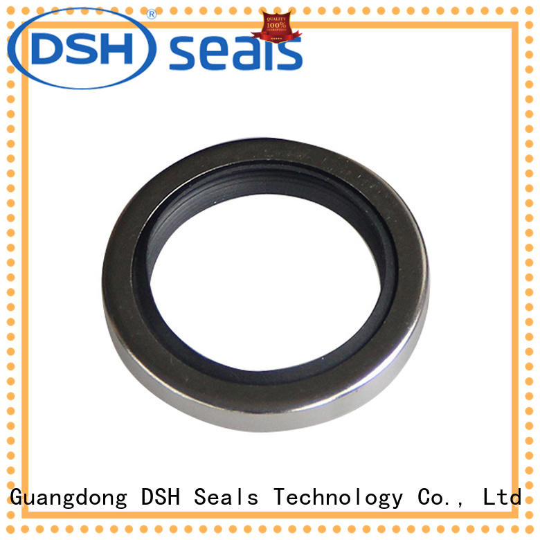 double oil seal manufacturers shaft series for guide ring