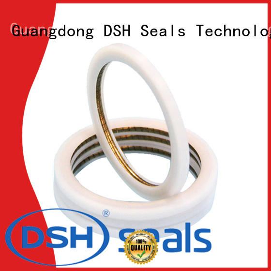 DSH energized energized seal factory price for refrigeration equipment