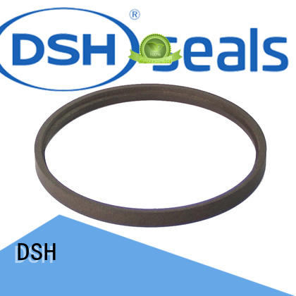 DSH Brand hby step rod seal catalogue double