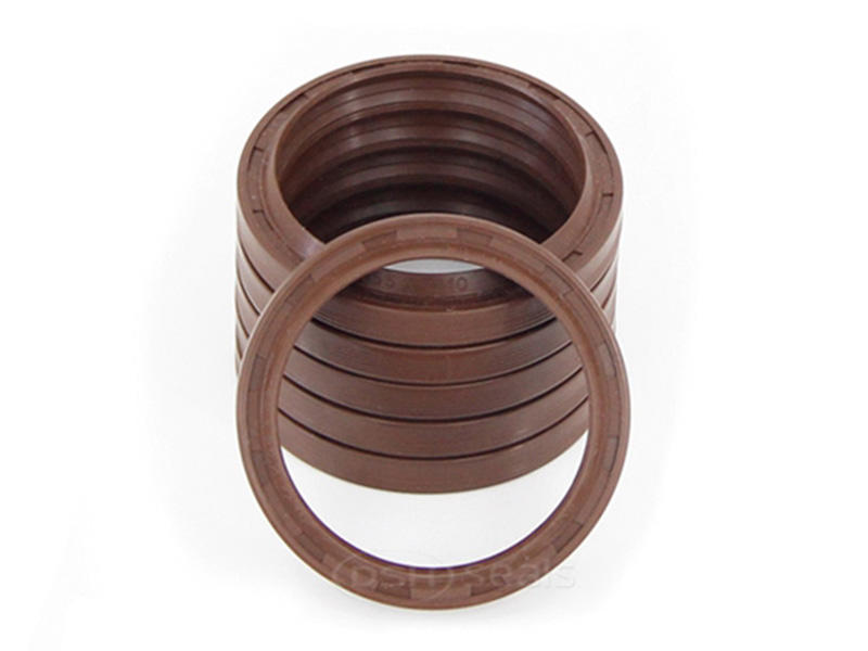 DSH-Different Types Of Oil Seals | Radial Shaft Double Lip Oil Seal-1