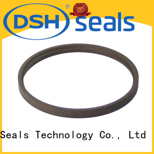 DSH delta ptfe rod seal factory price for machine