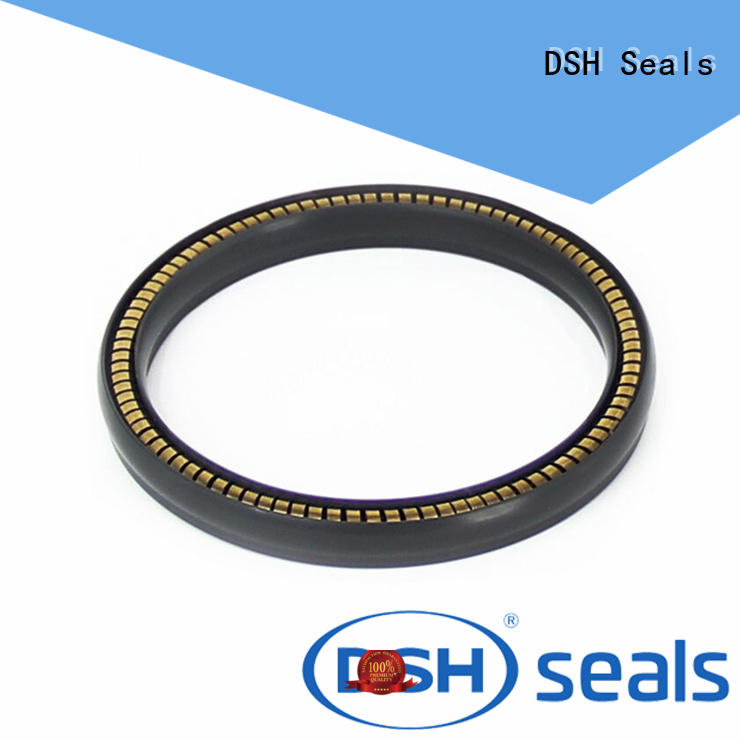 carbon elgiloy face spring loaded seal DSH Brand
